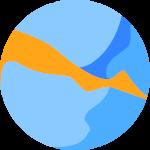 Image of the BMSIS logo