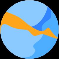 The BMSIS logo