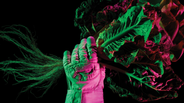 Astronaut glove holding food crops while illuminated by grow lights
