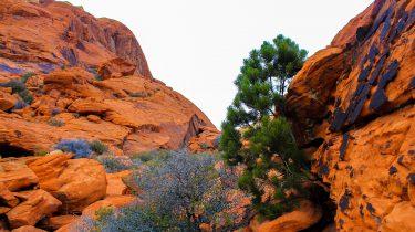 Red rock in Utah, USA